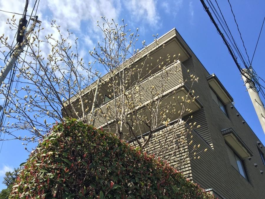 20150416-00000001-corp_sakura-000-31-view